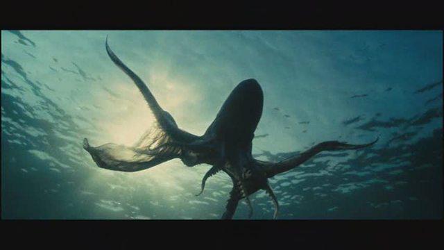 Unsere Ozeane Video 8