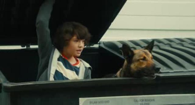 Max - Agent auf vier Pfoten Video 2