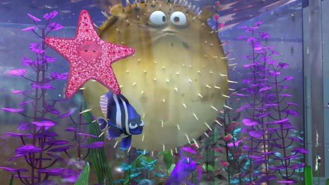 Findet Nemo (2013) Video 3